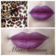 Perfect fall shade. Fergie Collection by Wet&Wild: Fergunson Crest Cabernet. Jordana EasyLiner:Cabernet