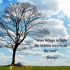 """""""Wine brings to light the hidden secrets of the soul."""" - Horace"""