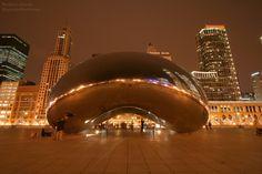 Chicago Dil Okulları