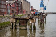 RDM-Kade Heijplaat Rotterdam #Heijplaat #Port #Rotterdam #010 #Holland #Dutch #Harbor #Dock #City #Urban #Life #Buildings #Nature #Roffa #Netherlands #Canon #700D #photography