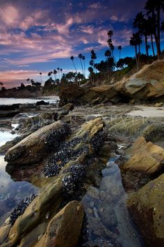 Laguna Beach, CA Tide Pools