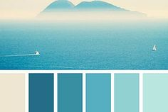Design Seeds: Color Palettes Inspired by Nature