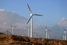 Canarias es la cuarta comunidad con menos potencia eólica instalada, 176 Mw