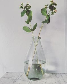@d__nest Spring buds  Recycled glass vase from @notonthehighstreet Marble mantle piece #spring #springbuds #notonthehighstreet #recycledglass #vase #marble #livethelittlethings