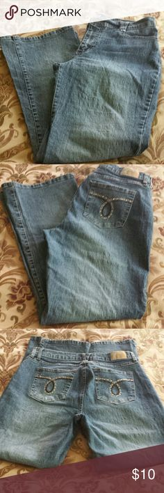 """Duplex"" Tyte Boot-Cut Stretchy Jeans, Size 14 P. Very stretchy and comfortable boot cut jeans. 55% Ramie, 25% Cotton, 18% Polyester, and 2% Spandex. Size 14 Petite, ""Duplex"" by Tyte. Worn but in very good condition. No stains, cuts, tears, rips, defects, or flaws. Tyte Jeans Boot Cut"