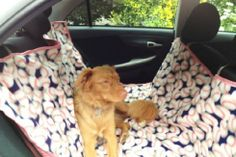 Dog Hammock 20 Easy DIY Ideas and Tips for a Perfectly Organized Car Dog Hammock, Hammock Cover, Car Accessories For Girls, Puppy Face, Dog Travel, Diy Car, Organization Hacks, Organizing Tips, Cleaning Tips