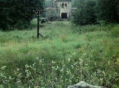 Tarkovsky: Film as Art: July 2011