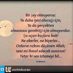 Özi @ozlemkunduraci Instagram photos | Websta (Webstagram)