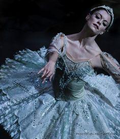Megan Zimmy Kaftira - #art #ballet