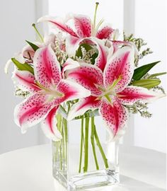 Birthday Flowers - Pink Lily Bouquet by FTD - This sweet bouquet is an expression of your love and affection. Fragrant pink Stargazer lilies are accented with pink statice and arranged in a clear glass vase. Send it just because you care. My Flower, Beautiful Flowers, Lilly Flower, Flower Tower, Flower Beds, Pink Lily, White Lilly, Flowers Online, Arte Floral