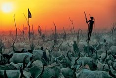 Extraordinary Photos: The Essence Of The Dinka Tribe In Sudan | Bored Panda