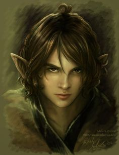 Elfboy ~ Adele Sessler  Something for the teenage girl's room in the dollhouse ;)