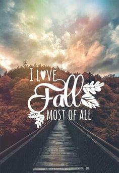 Imagen de fall and autumn
