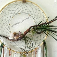 Nothing looks prettier on a wall than a combination of natural materials,air plants and lace! Natural feathers, spirit quartz, seashells and bottle charms 🕉️☮️🌈💛 @ Johannesburg Spirit Quartz, Bottle Charms, Air Plants, Seashells, Natural Materials, How To Look Pretty, Feathers, Dream Catcher, Crystals