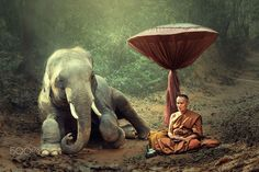 Monk and elephant by Santi foto on 500px