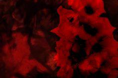 Flower texture by Destinaetus on deviantART