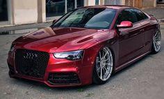 Audi 100, Audi Quattro, Volkswagen, Cadillac, Audi A5 Coupe, Used Audi, Bmw, Car Colors, Audi Cars