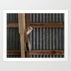 Barn Owl Art Print by Ooh! Look! Photography  - $30.00 Owl Art, Barn, Art Prints, Photography, Home Decor, Art Impressions, Converted Barn, Photograph, Decoration Home