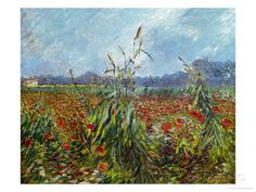 Vincent Van Gogh 'Field with Poppies'