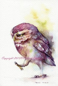 Reserved for KaraP18 - The Owl - ORIGINAL watercolor painting 7.5x11 inches