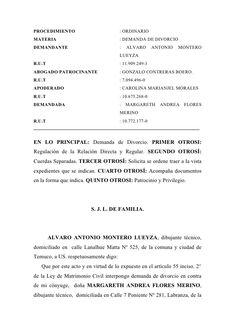 PROCEDIMIENTO                         : ORDINARIO MATERIA                               : DEMANDA DE DIVORCIO DEMANDANTE  ...