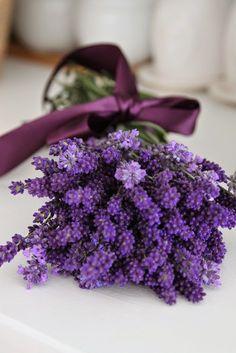 Bouquet de lavande, au beau noeud