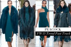 TREND COUNCIL FW 2015- PEACOCK