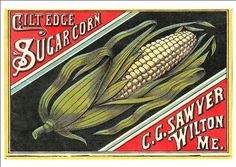 'Gilt Edge - Sugar Corn' - Beautiful Print Taken From A Vintage Produce Crate Label by Design Artist http://www.amazon.co.uk/dp/B00KRC05NI/ref=cm_sw_r_pi_dp_XTfsvb11N47X0