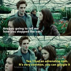 Twilight Posts @twilightknows   Websta (Webstagram)