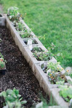 organic cinderblock vegetable garden by KelliSeegerKim   Stocksy United