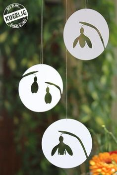 Snowdrop Plotter-Freebie: The Plotter-Freebie contains 6 snowdrops … - Diy Origami Ideen Easy Craft Projects, Easy Crafts For Kids, Christmas Crafts For Kids, Christmas Diy, Diy And Crafts, Paper Crafts, Happy Easter, Creations, Chicken Recipes