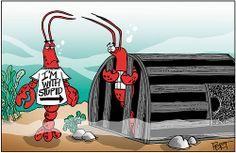 Cartoons from Jeff Pert, a Maine treasure