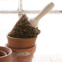 Garden Shed Essentials: Flowerpot Brushes Gardenista