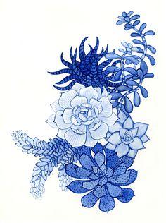 Succulents in Blue — Susie So