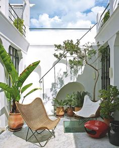 Tanger, terrace-patio, house of Bruno Frisoni and Philippe Garcia ......GLOBAL