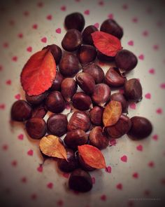 Oh it's N🌰VEMBER. #memoriesframing . . . . . . . . . . . #chestnut #november #chestnutbrown #dryfruit #nuts #autumn #fall #love #streetfood #instafood #foodstagram #foodporn #bestoftheday #foodie #instagood #foodaddict #winter_is_coming #winter_food #instahealth #leaves #autumn_leaves #autumn_mood #deliciousfood #amazing #chestnutstreet #chestnuts_roasting