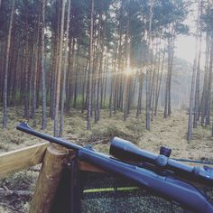 Wunderschöner kalter Morgen in der Dübener Heide #hunt#jagd#jakt#caza#chasse#caccia#jaktforlivet#morning#huntsman#bockjagd#bocksaison#huntsman#hunting#blaser#blaserr8#zeiss#zeissv8#spring#roebuck#swe_hunters#instachasse#germanhunt#sun#nature#awesome#germany by the.passionist