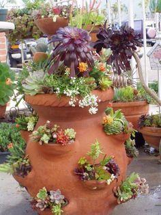 Succulents in a terra cotta strawberry pot. Succulents In Containers, Cacti And Succulents, Container Plants, Planting Succulents, Container Gardening, Planting Flowers, Succulent Gardening, Succulent Terrarium, Garden Planters