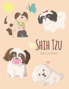 Shih Tzu illustrations this time <3 #dog #illustrations #shihtzu #vector #dogillustrations