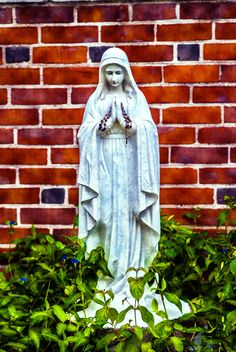 Virgin Mary Status - Picture of a statue of the Virgin Mary