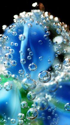 Les gouttes d'eau macro, flou, bleu iPhone 5 (5S) (5C) Fonds d'écran - 640x1136