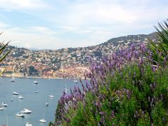 From Mary-James Lawrence's blog about her custom Provence tours. http://www.maryjames.net/provence.html