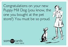 Congratulations on your new Puppy Mill Dog (you know, the one you bought at the pet store?) You must be so proud.