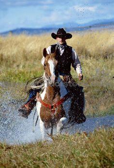 Rowdy ridin' the range on his favorite horse, Buck...............