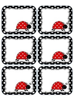 This packet includes editable ladybug labels. You may print these on cardstock or full label sheets as they do not fit a certain size. Diy And Crafts, Crafts For Kids, Paper Crafts, Lady Bug, Ladybug Party, Ladybug Room, School Labels, Educational Crafts, Classroom Themes