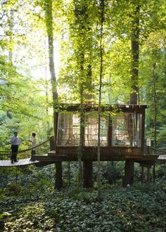 "My DREAM art studio! Tucked away in the trees with lots of light: ""TreeHouse Workshop is a Seattle construction company that builds cozy tree houses all over the Pacific North West. In fact for them, treehouses have become so popular that they have built more than 100 structures in the past few years."""