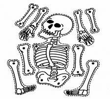 mr skelton where's your bone game