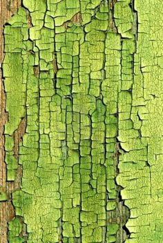 An Old Crackled Green Painted Wood Surface.