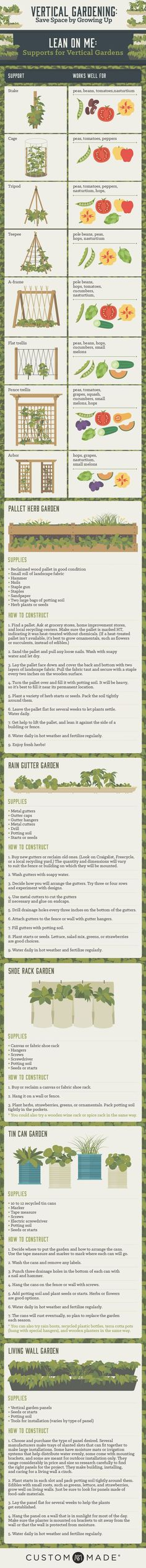 How to grow a vertical garden #vegetablegardeninfographic