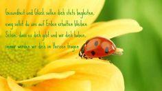 Gesundheit und Glück sollen dich stets begleiten #alles_gute_zum_geburtstag #geburtstag #geburtstags #grussegrusskarten